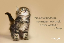 random-acts-of-kindness-wallpaper